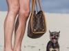 20130223_dog_beach_0146