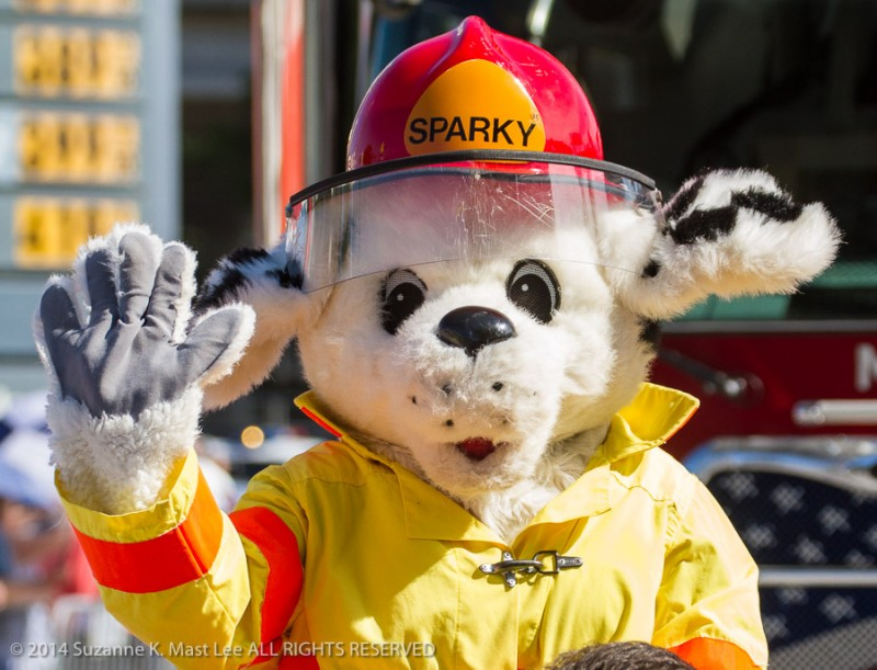 Calle Ocho, celebrations, Fire Department, fire dog, Florida < United States < North America, Latin, Little Havanna, mascot, Miami < South Florida, Outdoor, parade, Sparky, Three Kings Day Parade