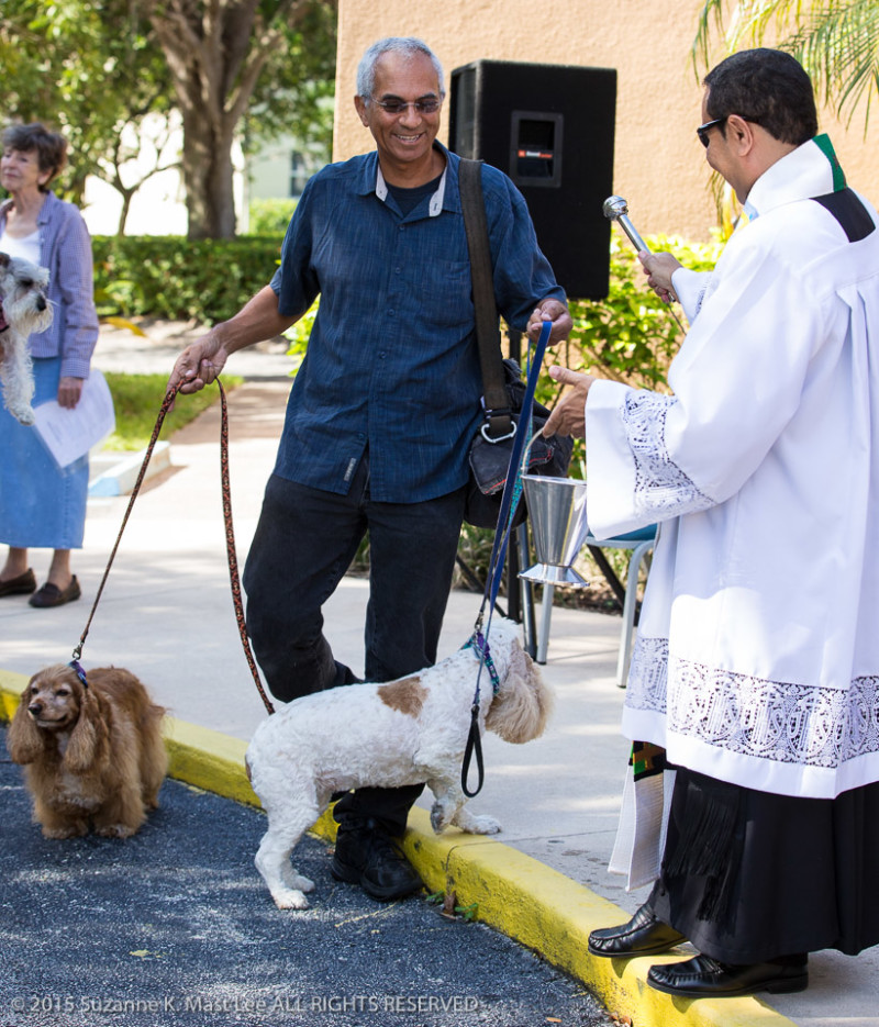 pet blessing, St. Martha's Catholic Church, Miami Shores, FL, dog, pet, canine, religion, cocker spaniel
